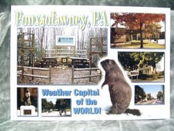 Postcard - Weather Capital of the World Collage Sku # 331