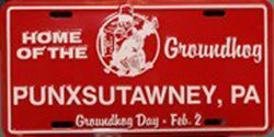 Punxsutawney Phil License Plate Sku# 298