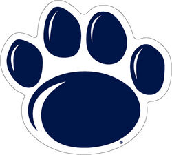 Large New Paw Car Magnet - 10""