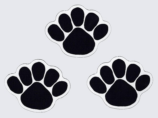 "Penn State Paw Magnet Small Set of 3 - 2.5"" x 3"""