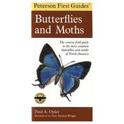Peterson Field Guides First Guide to Butterflies and Moths 102823 (Peterson Field Guides)