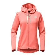 The North Face Women's Momentum Hoodie NF0A2VDB (The North Face)